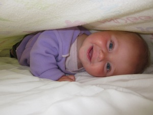 Marin sandwich on toasted white sheets