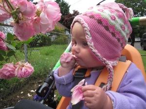 Marin Pettal tasting a rose petal.